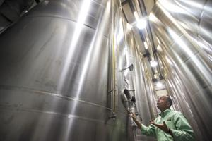 Lodi emerges as center of high-quality olive oil production