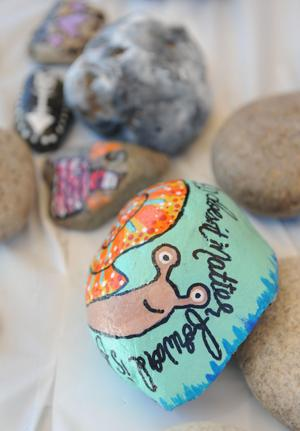 07_13_17_PAINTED_ROCKS_06.JPG