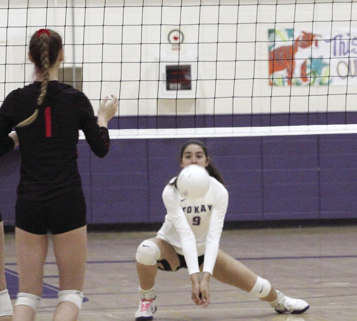 Pau, Tokay sweep Lodi volleyball