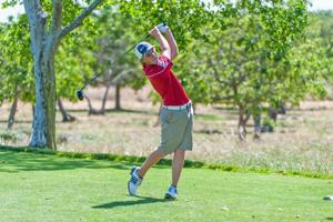 Boys golf: Lodi Flames swing for perfection again