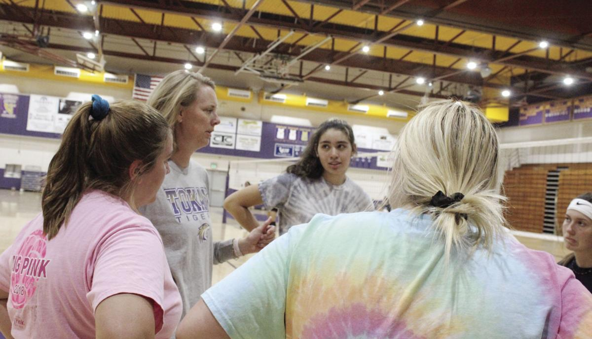 High school sports: Tokay graduate takes over Tigers' volleyball program
