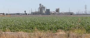 Walmart to buy Lodi farmland