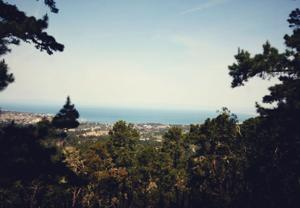 Hit the trail at Jacks Peak County Park for great views of Monterey Peninsula