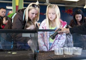Getting bugged at Lodi's World of Wonders Science Museum