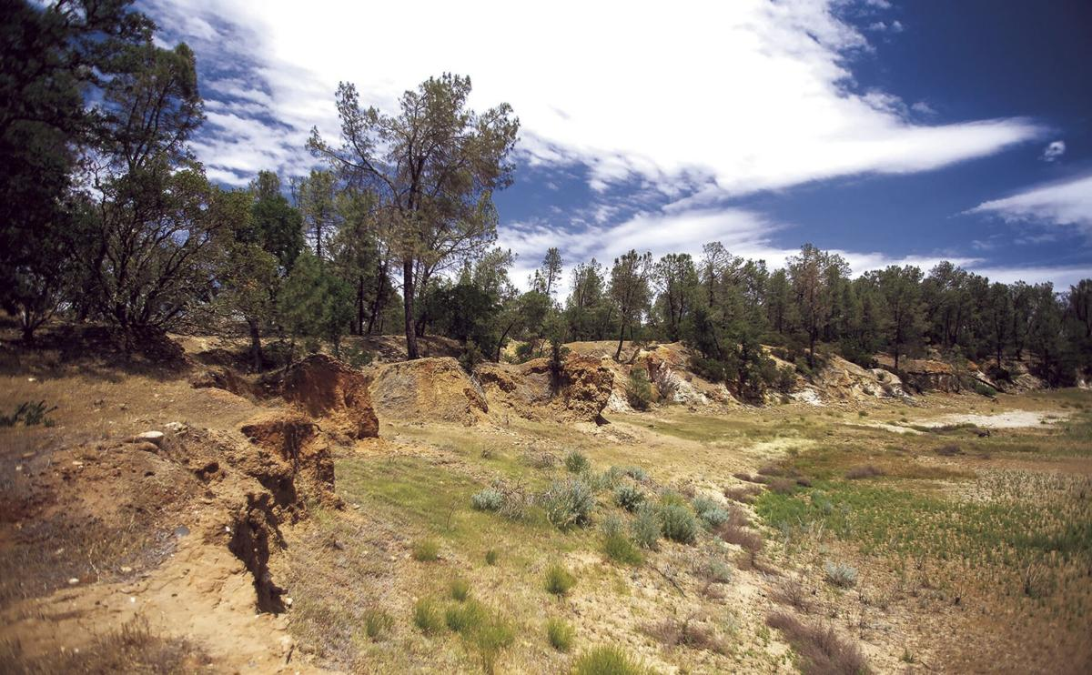 How a sharp-eyed ranger found a wondrous prehistoric trove in the foothills east of Lodi