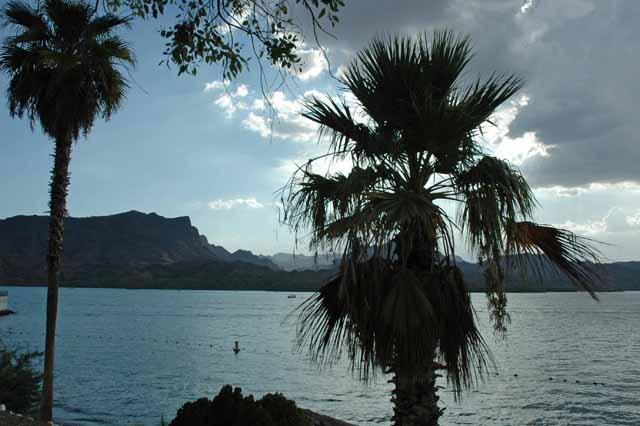 Lake Havasu, AZ