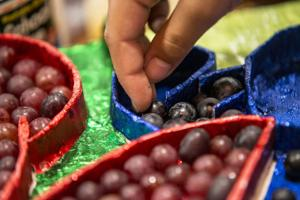 Get ready for the Lodi Grape Festival!