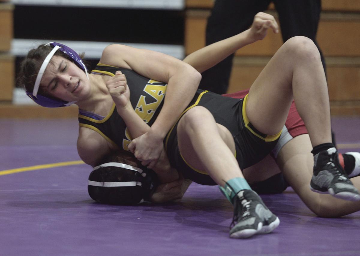 Girls wrestling: Tigers take on grapplers
