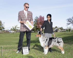 San Joaquin Kennel Club celebrates 100 years with dog show
