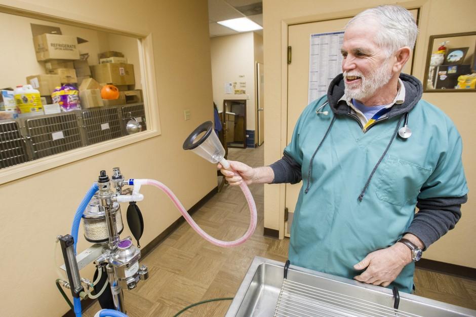 Lodi veterinarian bills may increase
