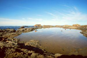 Search for colorful sea glass at Glass Beach in Fort Bragg