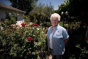 Lodi Woodbridge Rose Society member Marge Cordero shares joy of roses