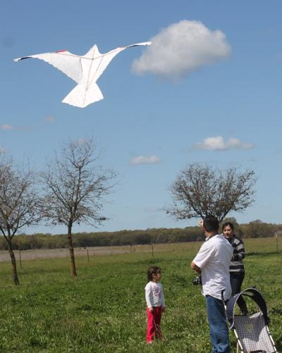 Sun comes out for Kite Day at McFarland Ranch