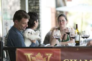 Downtown Lodi sees increase in visitors