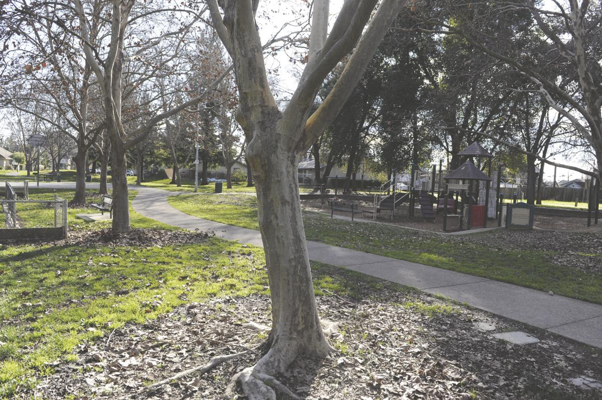 Are Woodbridge park fees going to other parks?