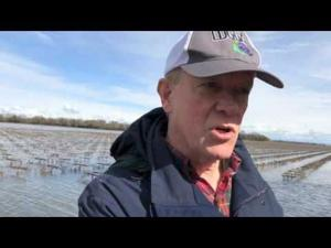 Congressman McNerney visits flood area