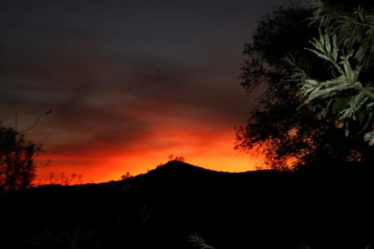 Sunset in Sonora