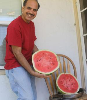 Eastside Lodi couple grows 37-pound watermelon