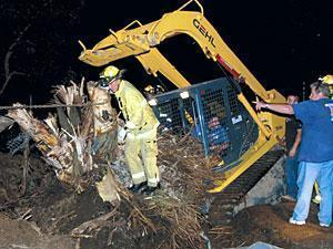 Tree stump falls on man in Woodbridge