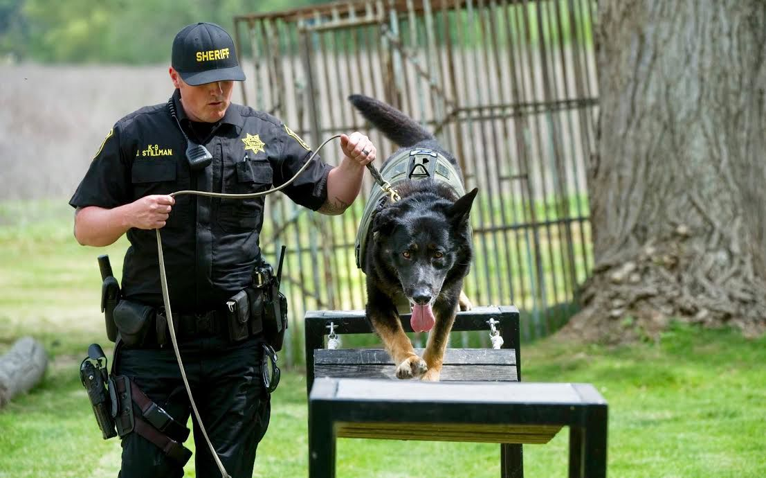 Death of K-9 a reminder of bond between officers and their dogs
