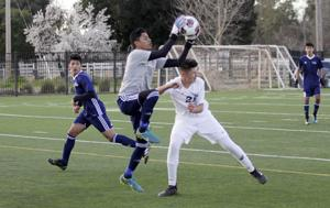 SJS boys soccer playoffs: Hawks out in quarterfinals, but proud of season