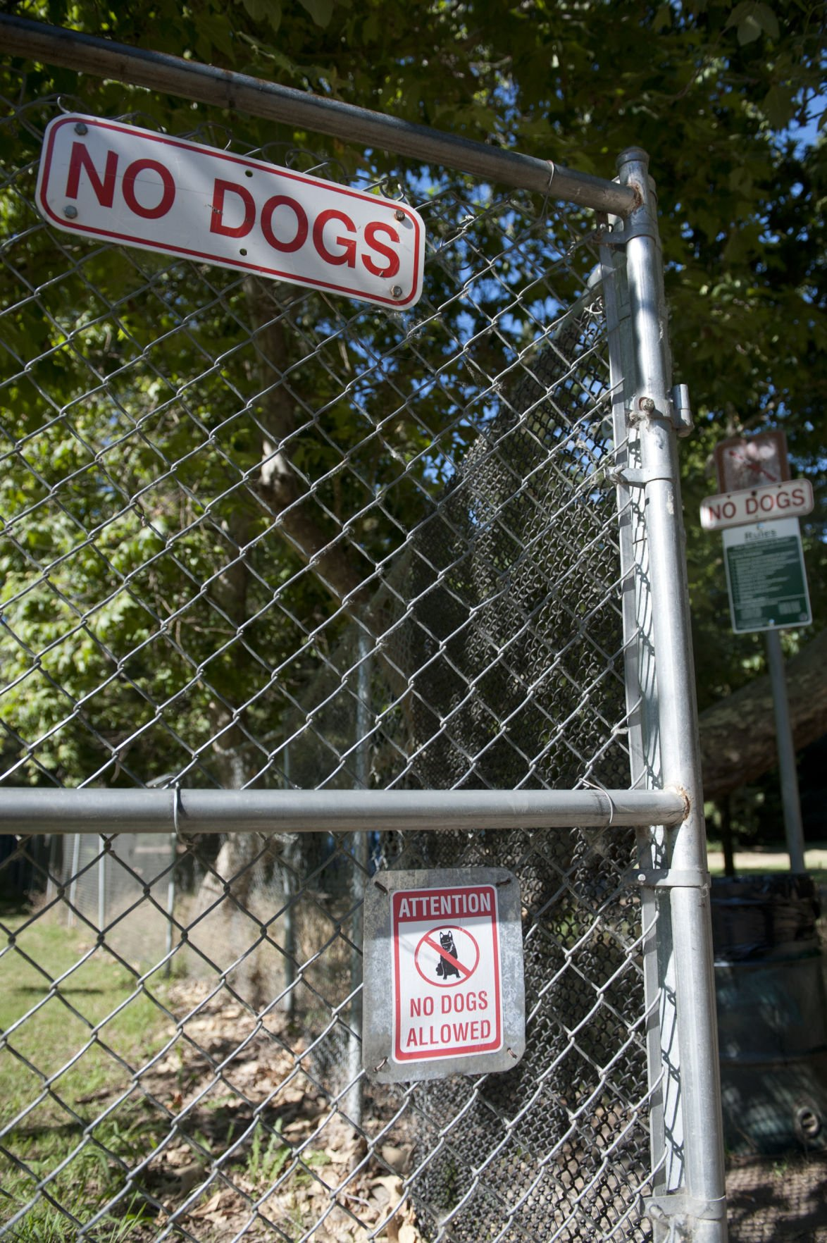 Dogs in Lodi Lake nature area cause concern