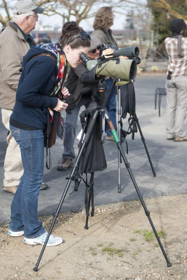 Local birders explore the Mokelumne River floodplain