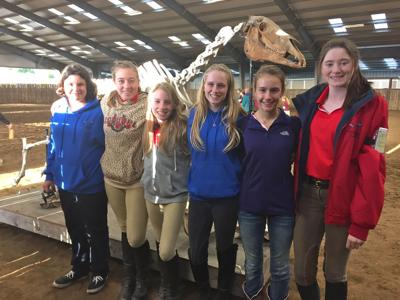 Liberty Oaks Pony Club members attend horse management day