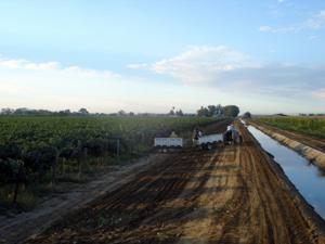 Borra Vineyards Home Ranch