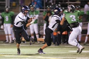 Quick exit for Tigers as the Pride prevails