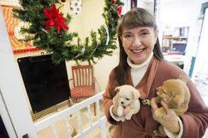 PALS co-founder Nancy Alumbaugh shares pet adoption tips