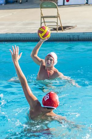 Water polo: Nic Carniglia brings a world of talent back to Lodi Flames
