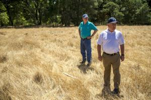 Tracy Lake project to help recharge local groundwater