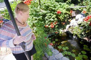 Longtime Lodi Unified School District teacher Susan Brown retires