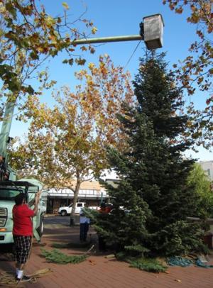 Downtown Lodi looking a lot like Christmas