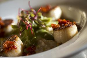 Crush Kitchen + Bar in constant flurry of changes to high-end menu