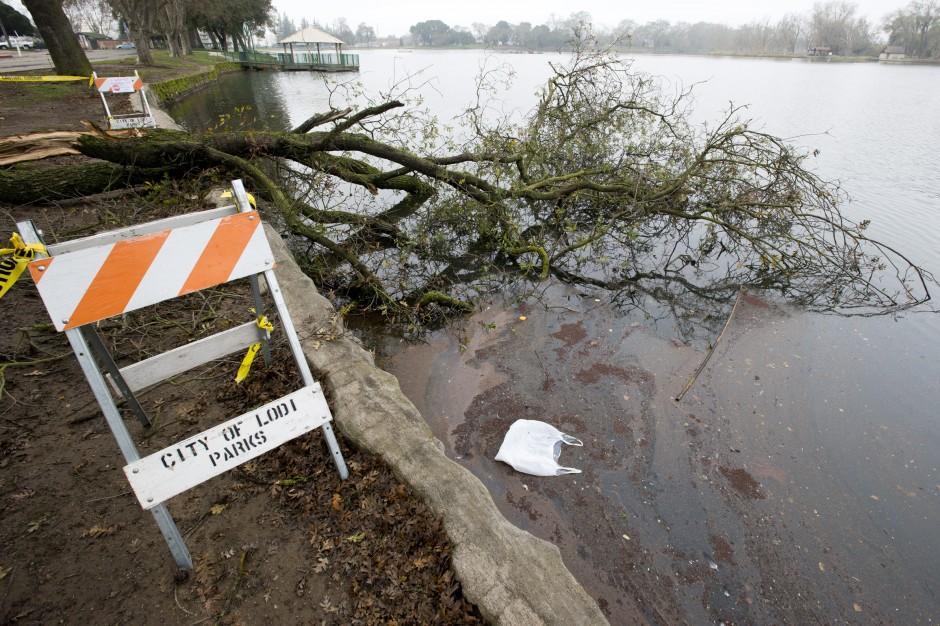 High winds, fallen trees temporarily close Lodi Lake