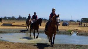 Liberty Oaks Pony Club adds new water feature