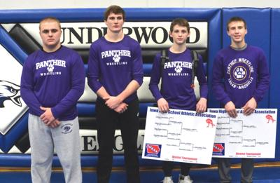 february2019statewrestlingqualifiers