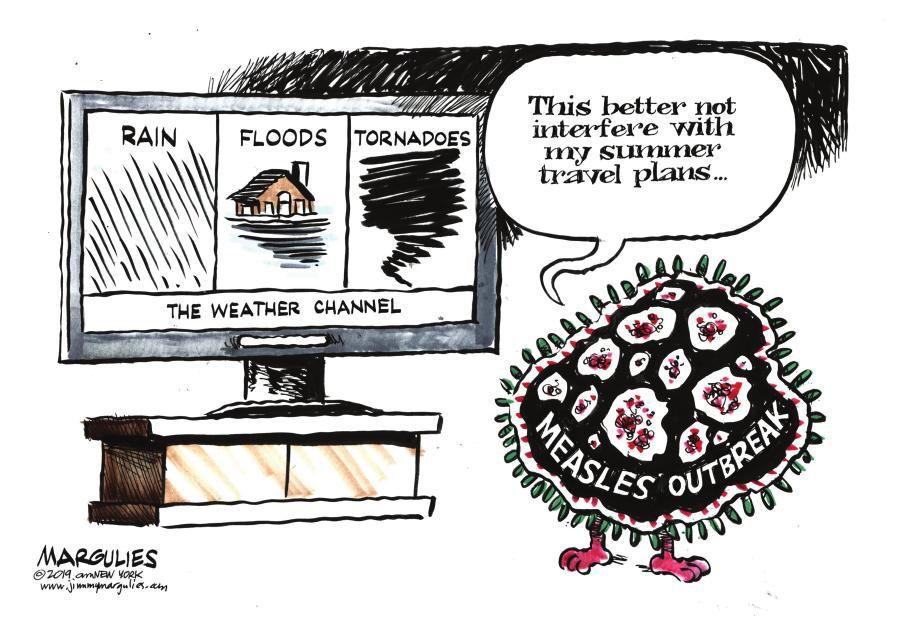 Cartoon: Summer plans
