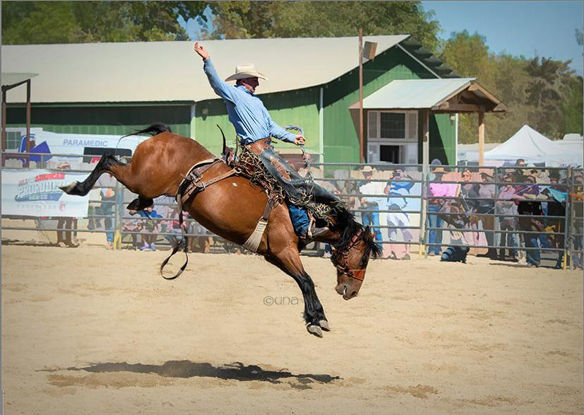 091919 Wine Country Rodeo 1