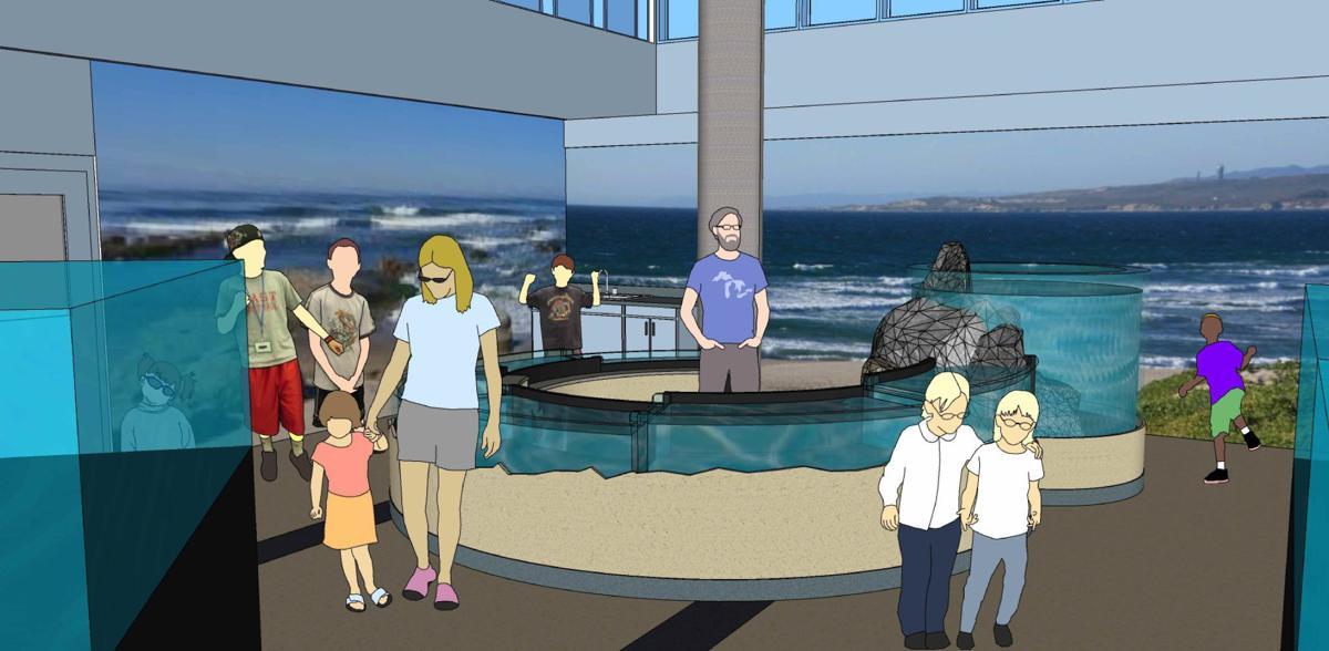 CHS Aquarium design south