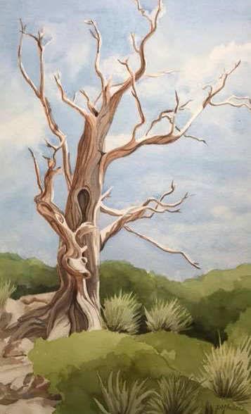 """Old Man of Sedona"" by Diane Atturio"