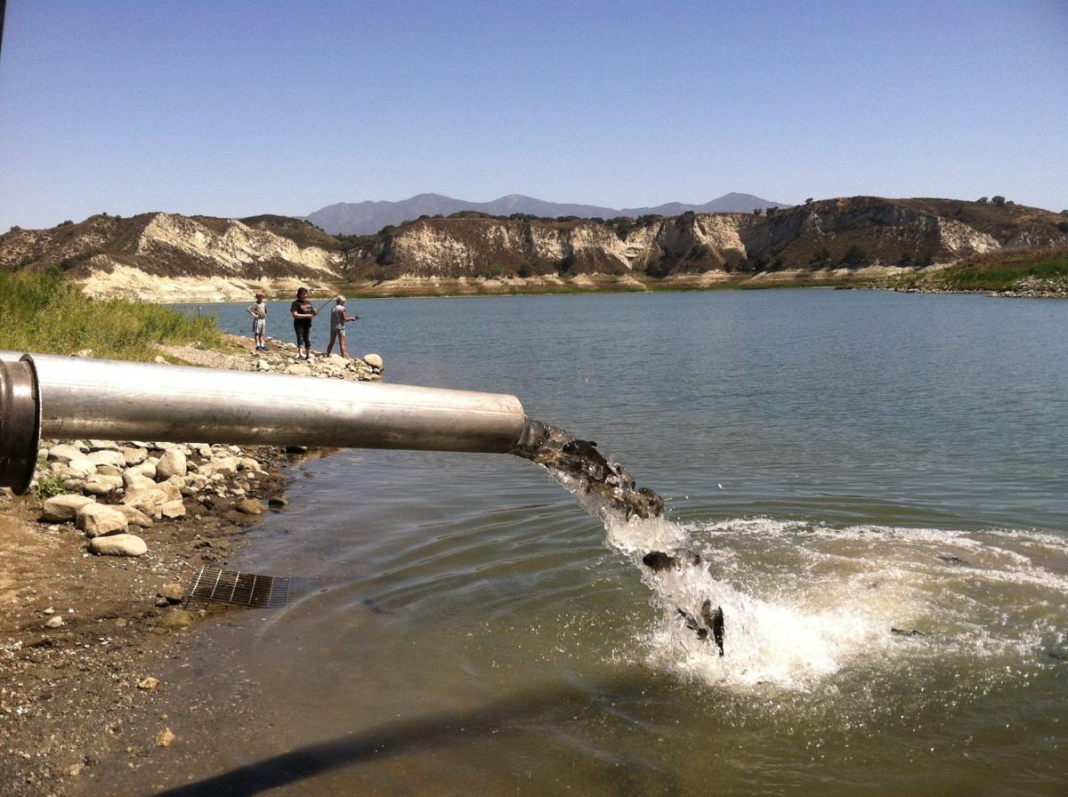 Second fish plant of year set tuesday at cachuma lake for Cachuma lake fishing