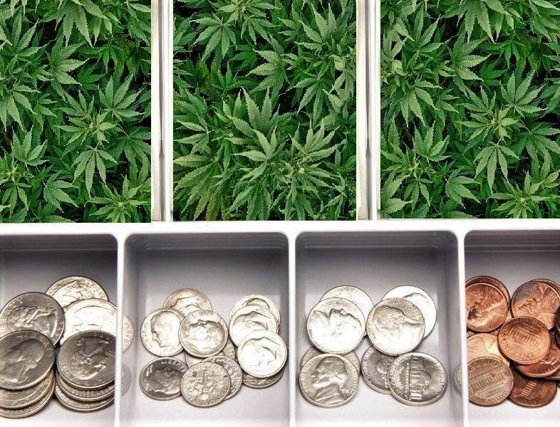 Cannabis as cash.jpg