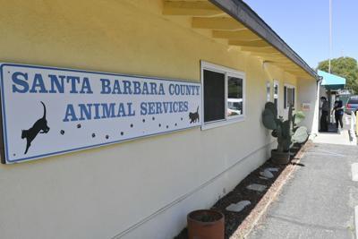 Santa Barbara County animal shelter in Lompoc