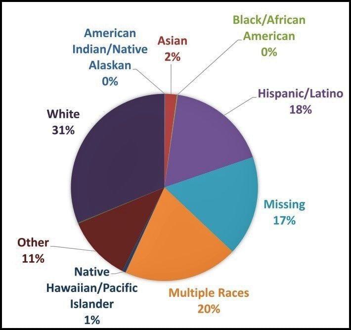 Ethnic pie chart
