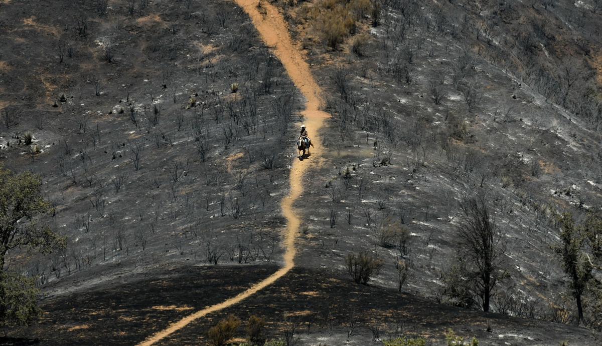 082018 Front fire 01.jpg