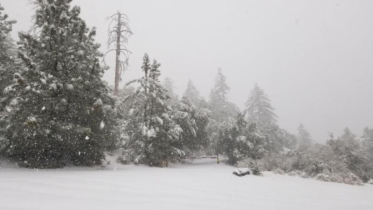 122920 Fig Mountain snow
