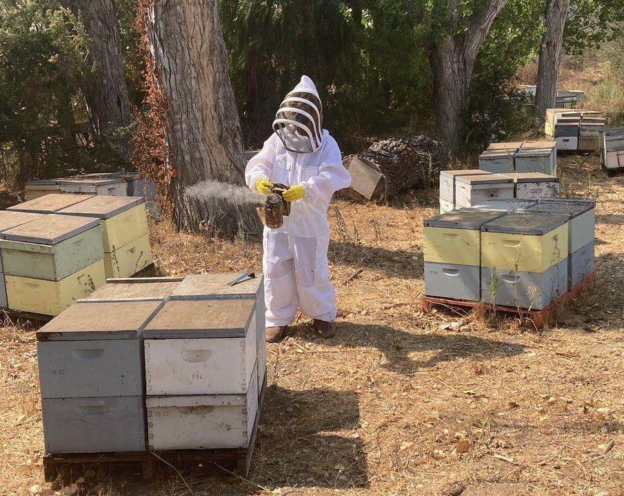 102220 Beekeeping 1